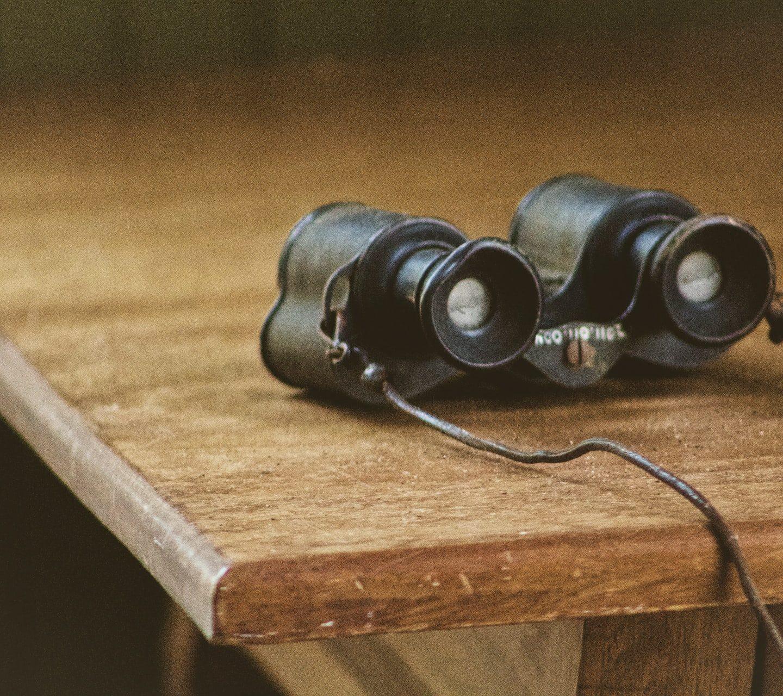 Reviews Of The Greatest Wildlife Spotting Binoculars